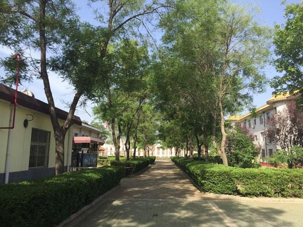 北京中加学校校园环境三