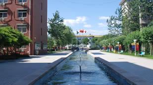 北京中加学校校园环境