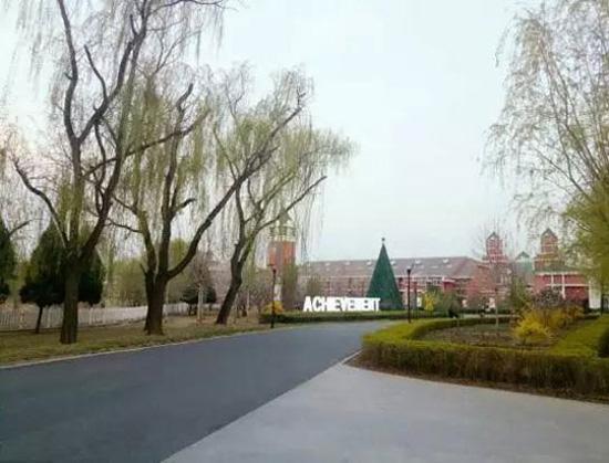 北京爱迪外国语学校小学课程有哪些?