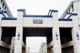 中南财经政法大学A-Level国际课程中心