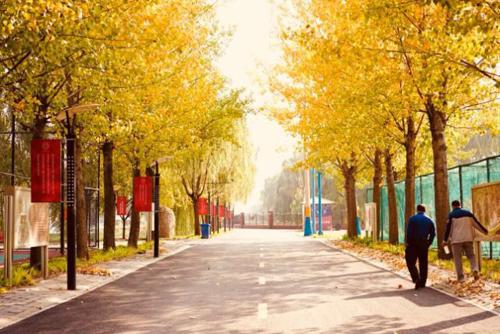 格瑞思国际学校北京总校上庄旗舰校