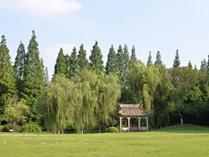 上海交通大学A Level国际课程中心校园大草坪