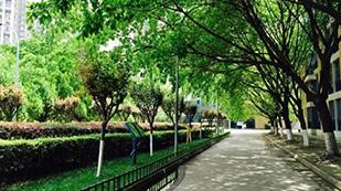 成都七中实验学校IEC课程中心道路