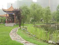 中南财经政法大学A-Level国际课程中心校园环境5