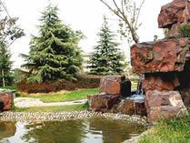 上海市新虹桥中学国际部小花园